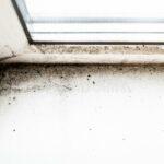 GST Rénovation - Ventilation moisissure fenêtre